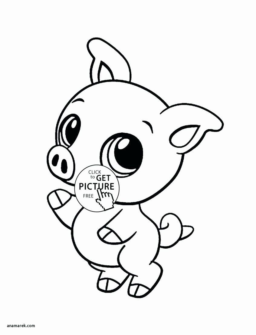 Sea Animal Coloring Sheets Elegant Best Coloring Cute Animal Coloring Pages Baby For Girls Luther Kung Fu Kung Fu Panda