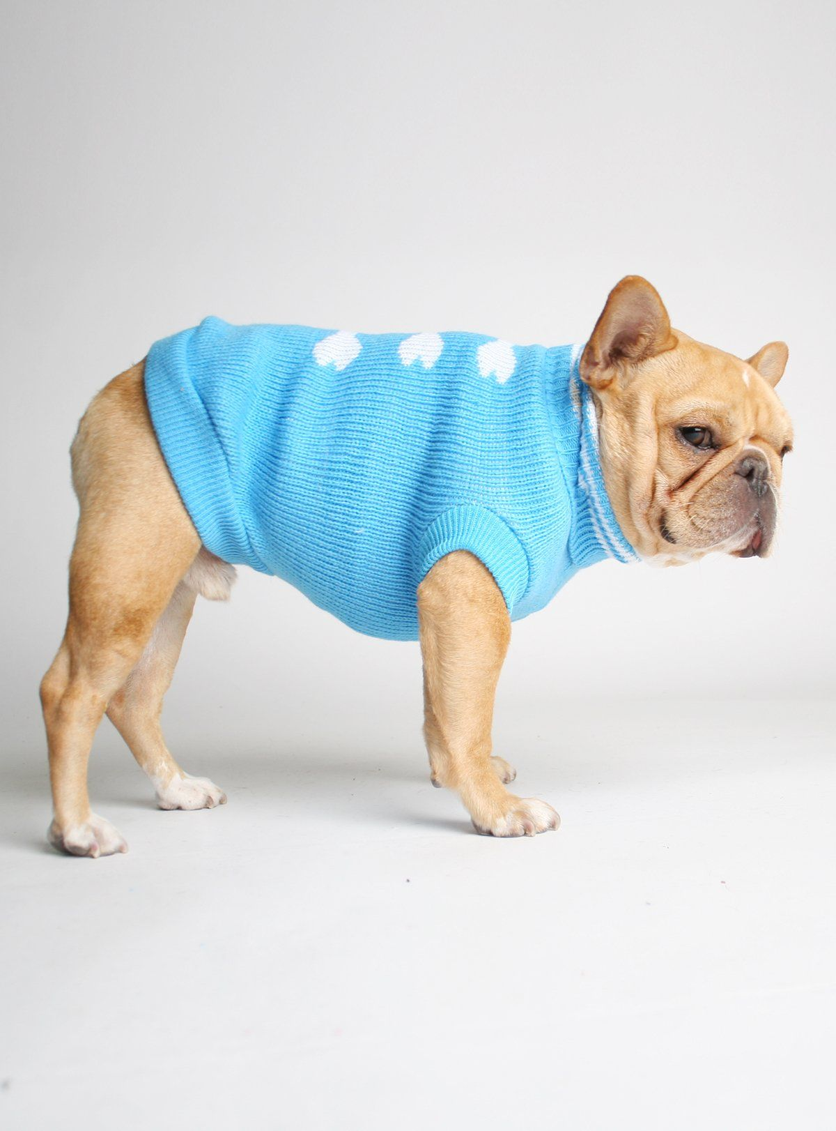 Glacial bones dog sweater | Products