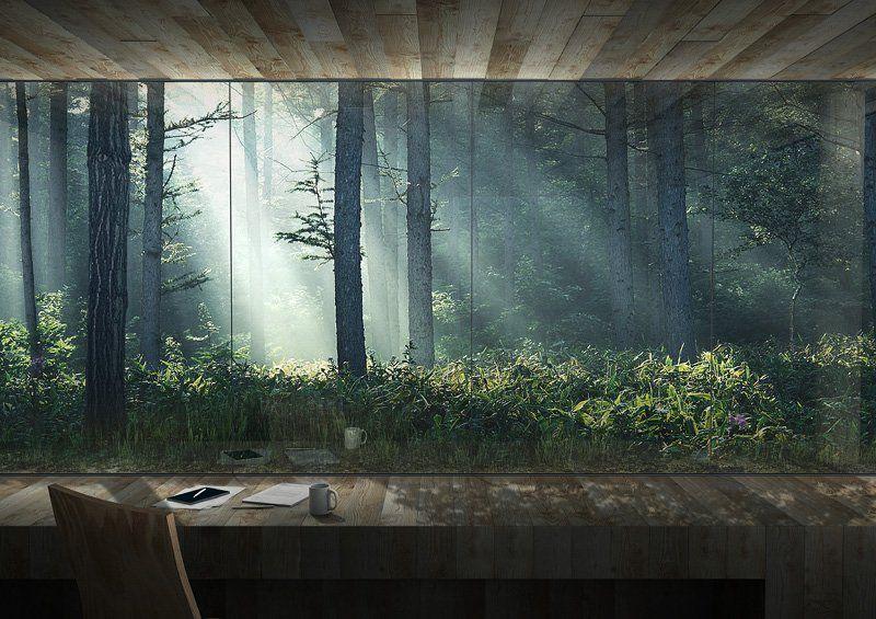 Jaja architects forest atelier atelier pinterest