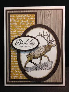 A the wilderness awaits wetlands masculine birthday card masculine a the wilderness awaits wetlands masculine birthday card bookmarktalkfo Gallery