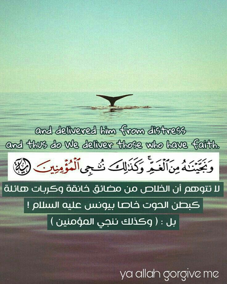 Signs Of Hope From The Holy Quran آيات الامل من القران الكريم Faith Have Faith Guidance