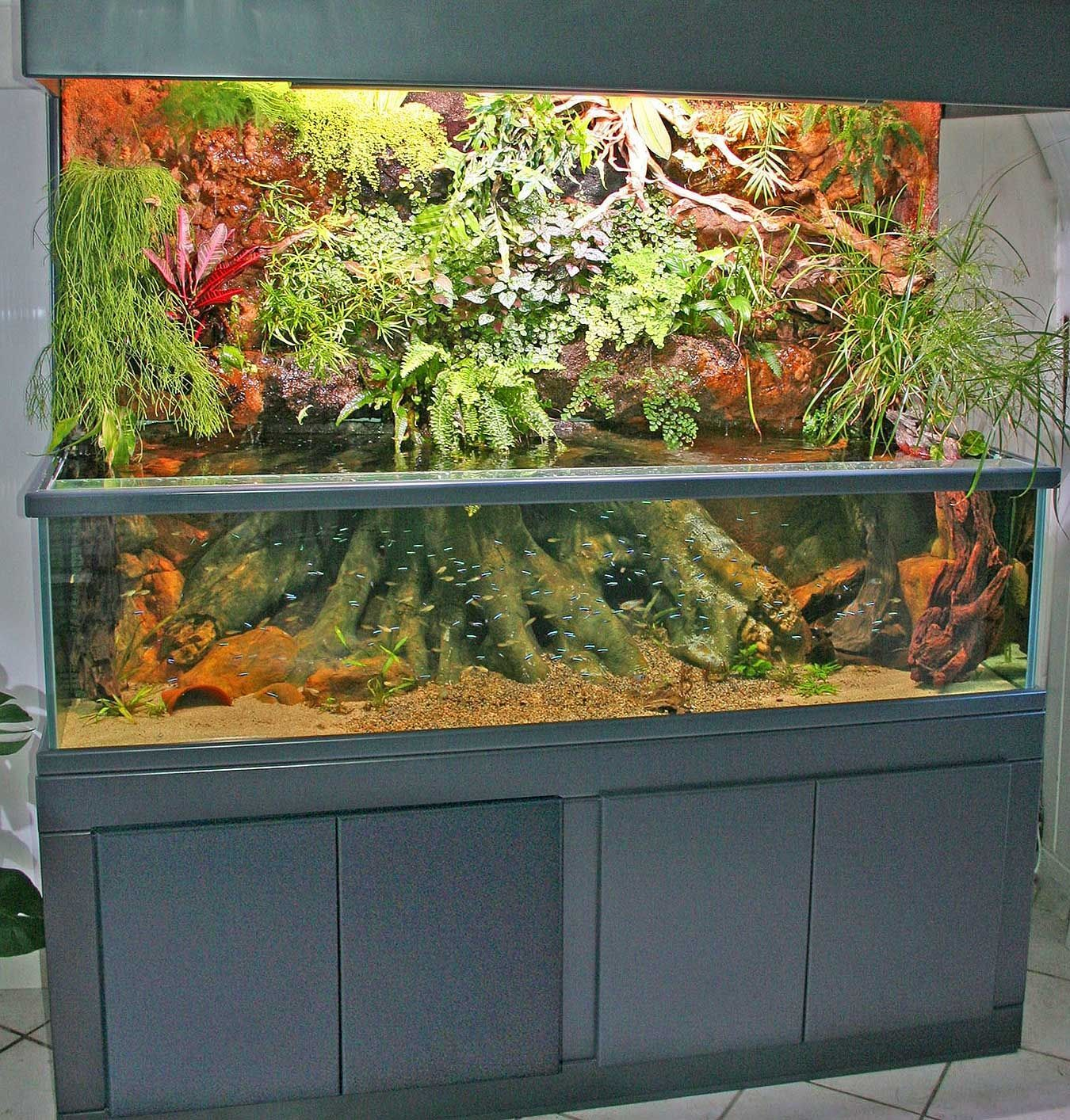 Orchid Aquarium - Recherche Google Planted 125 Gallon