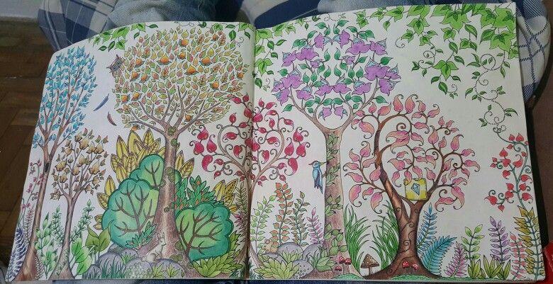 Floresta encantada pica-pau  Inspiração colorir  Jardim secreto