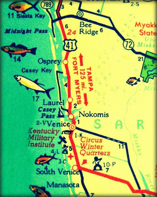 Map Of Venice Florida.Map Photography Venice 1960s Florida Beach By Vintagebeachmaps