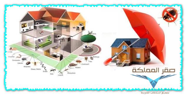 شركة مكافحة حشرات بالرياض Termite control, Diy pest