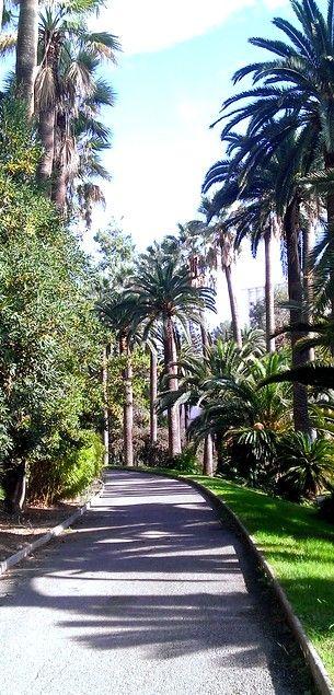 #nice #france parc of indochine #southoffrance via : https://foursquare.com/aheneghana/list/coffee-fans list