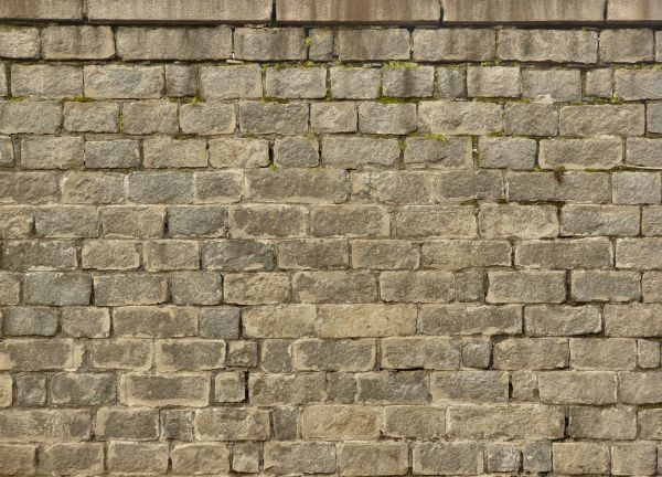 Image Result For Medieval Stone Wall Shrek Ideas