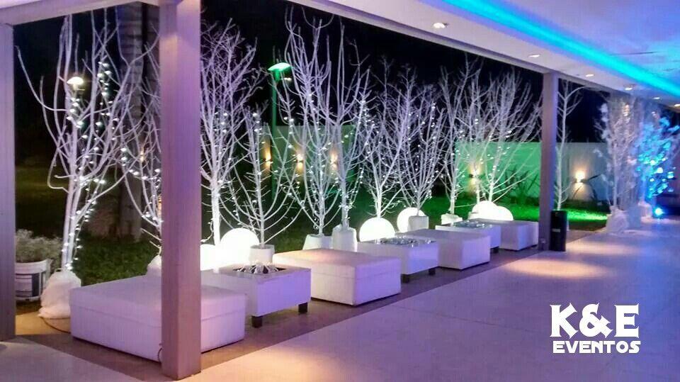Fiesta de 15 temática invernal