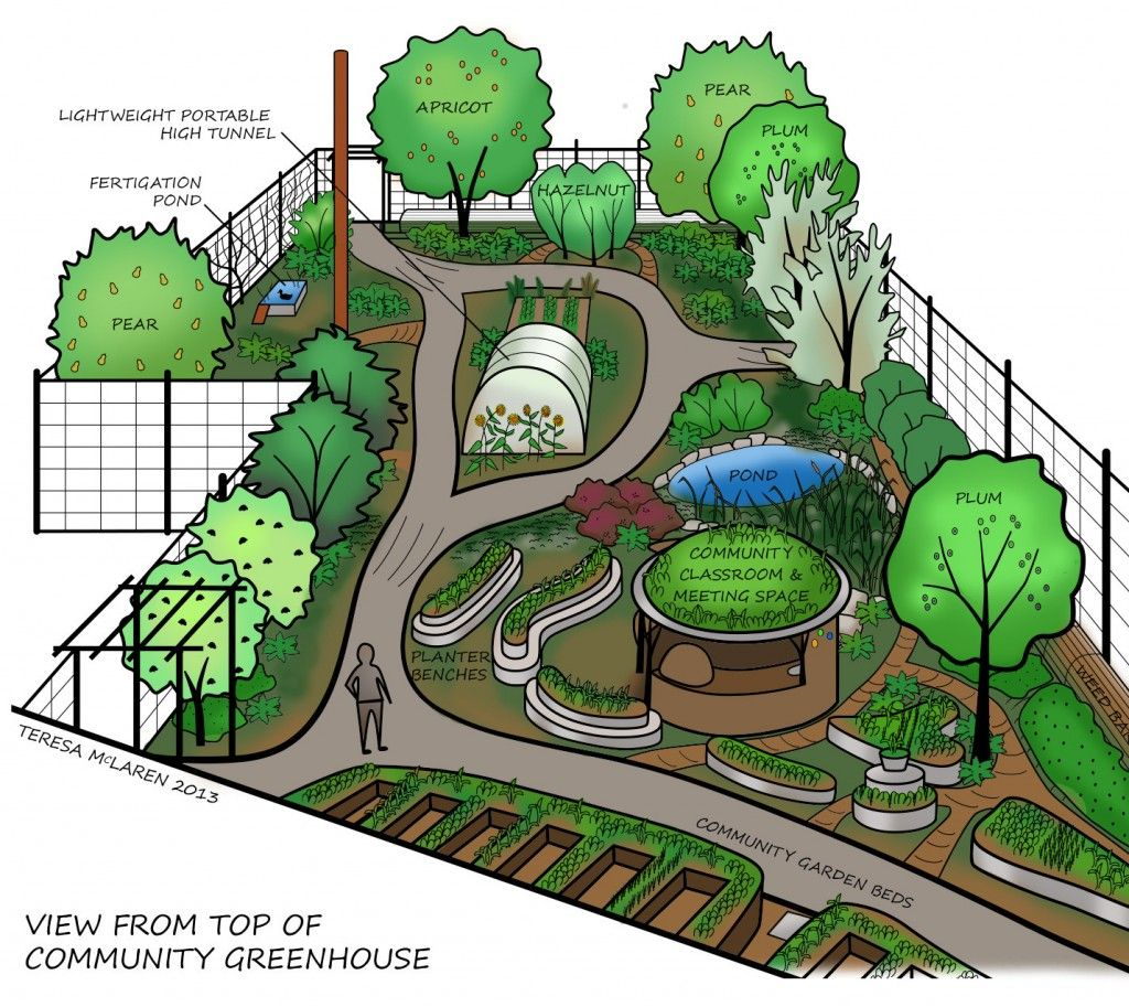 Designing a food forest google search homestead for Small permaculture garden designs