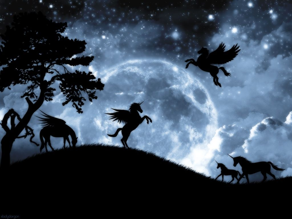 Pegasus Horse Black Dark Forest Horses Moon Night Pegasus Trees Unicorn Unicorn And Fairies Unicorn Fantasy Unicorn Wallpaper Wallpaper fantasy horse night forest art