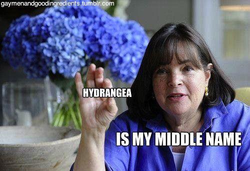 Ina Garten Flower Tips Hydrangeas Need Hot Water People And Don