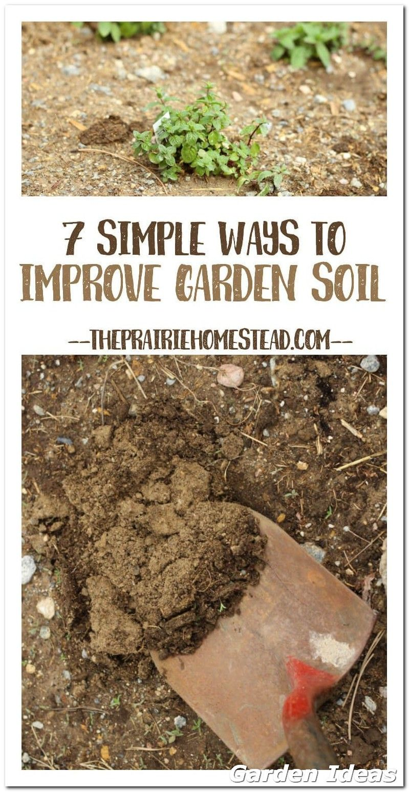 How To Create Beautiful Organic Garden With These Useful Tips