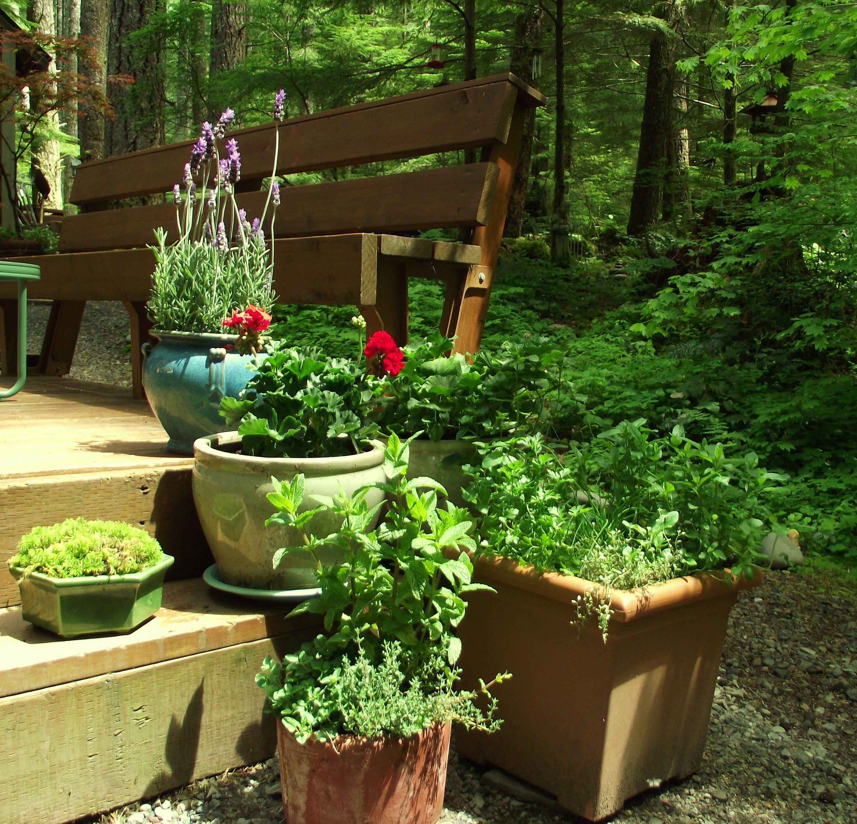 Herbs Balcony Gardengarden