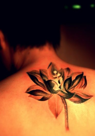A lotus flower tattoo on the back filipino flower pinterest multiple lotus flower tattoo designs including an ink wash style of lotus tattoo a well designed lotus flower tattoo along with some sanskrit characters mightylinksfo