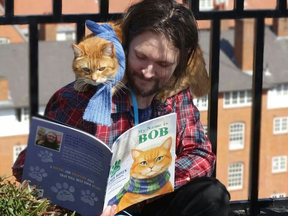 James and Bob Bob der streuner, Berühmte katzen und Katzen