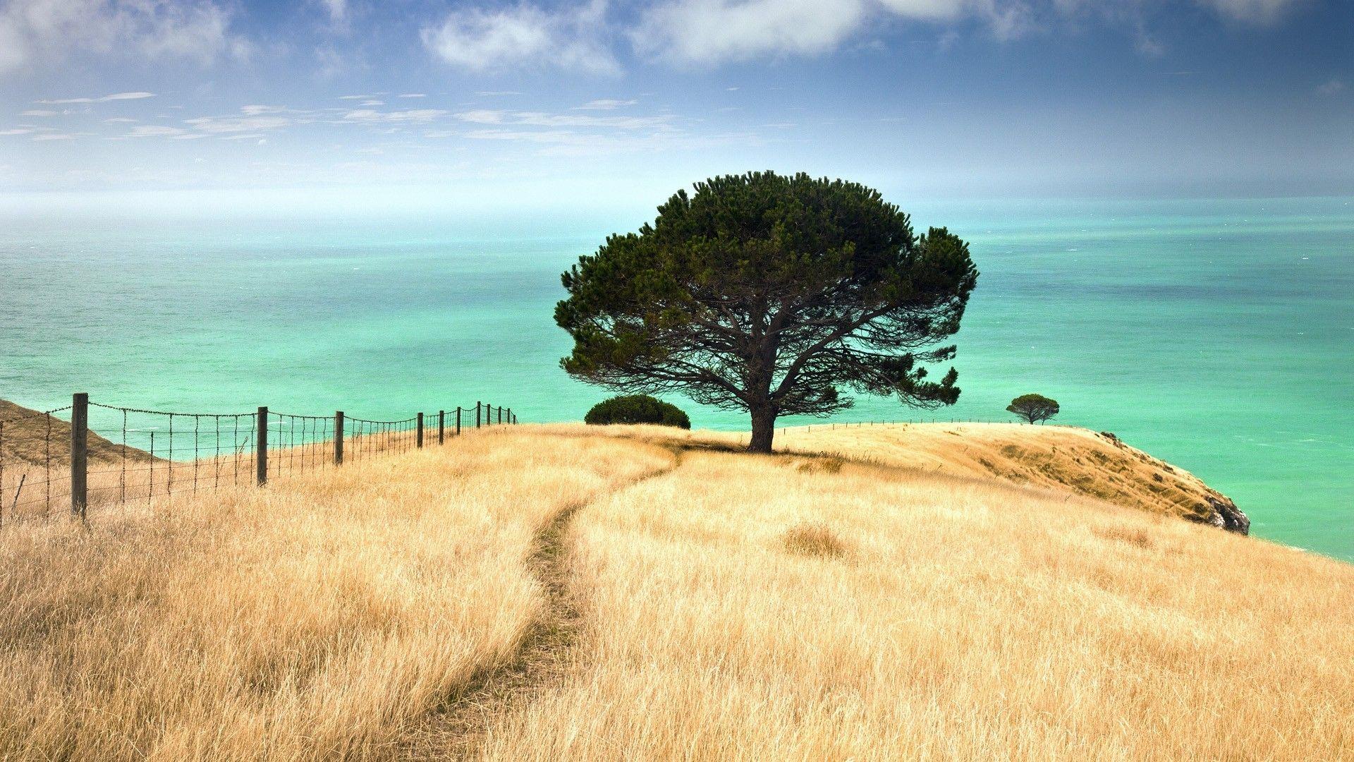 Best background images new zealand New Zealand
