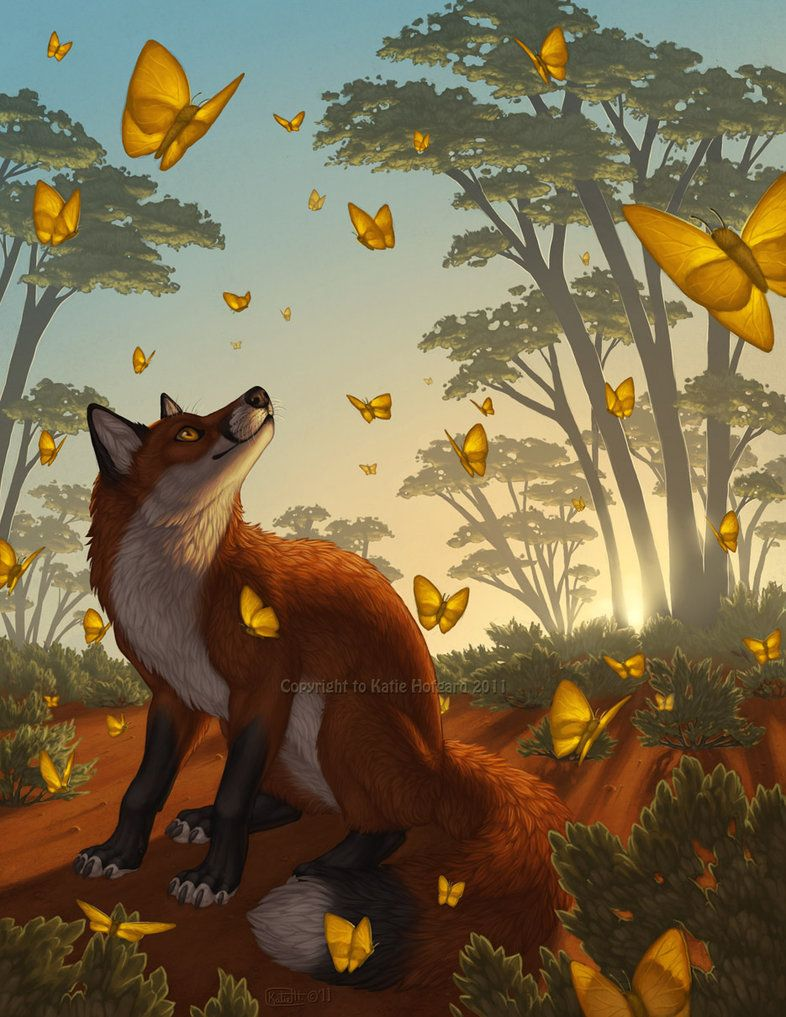 best images about foxes on pinterest wolves red fox and finger