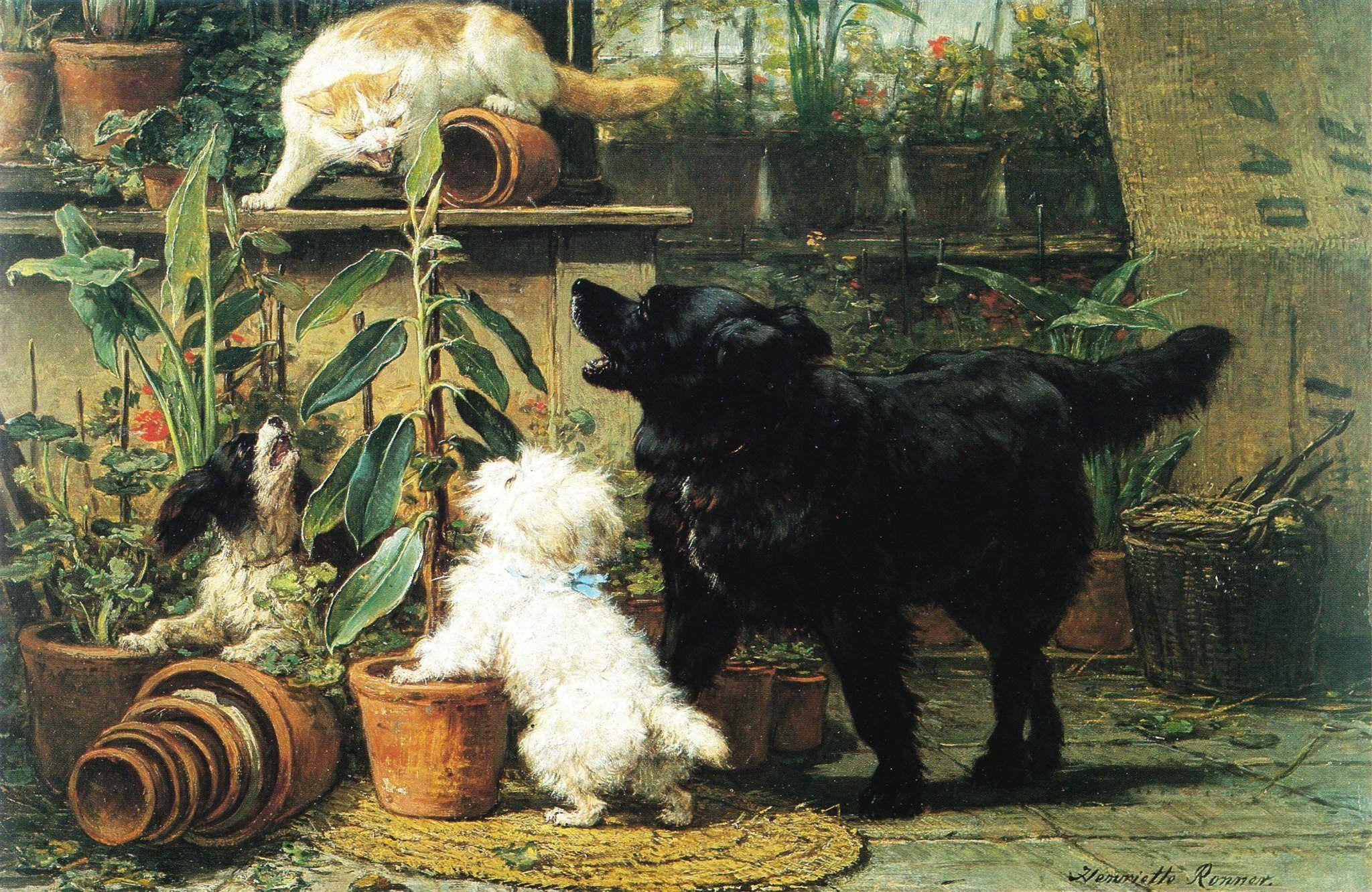 Bad Dogs Henriette Ronner Knip 1821 1909 Malteser
