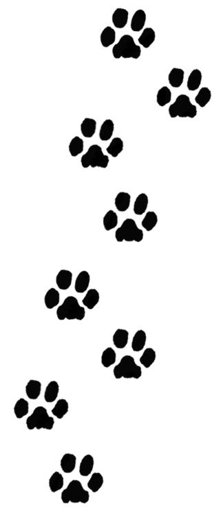 Making Dog Paw Prints