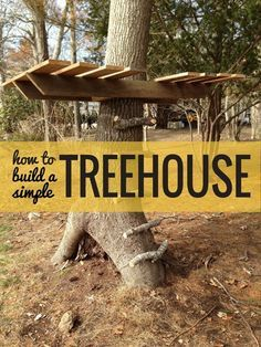 How To Build a Treehouse — Apartment Therapy Tutorials http://www.apartmenttherapy.com/how-to-build-a-treehouse-apartment-therapy-tutorials-186867