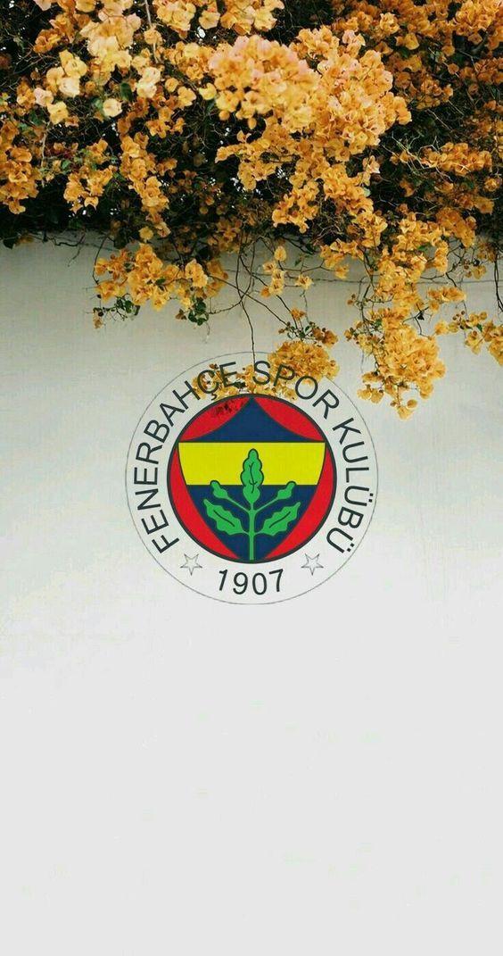 Fenerbahçe iphone Android duvar kağıdı