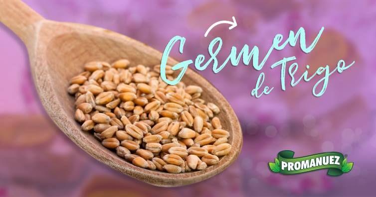 beneficios del germen de trigo en la salud
