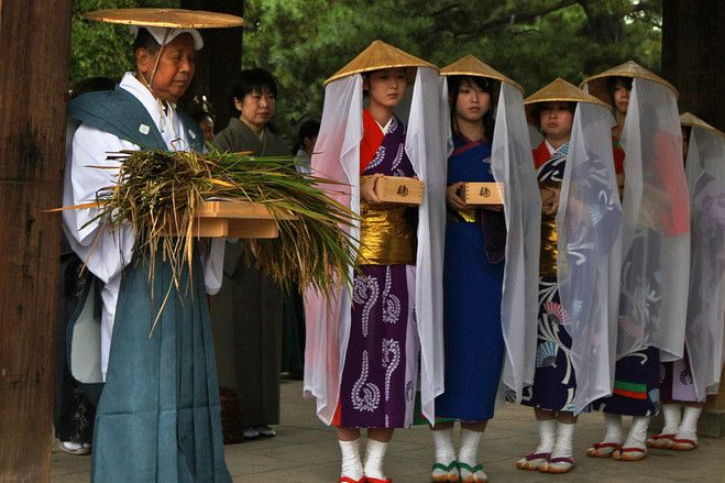 Rice Harvest Ritual in Japan