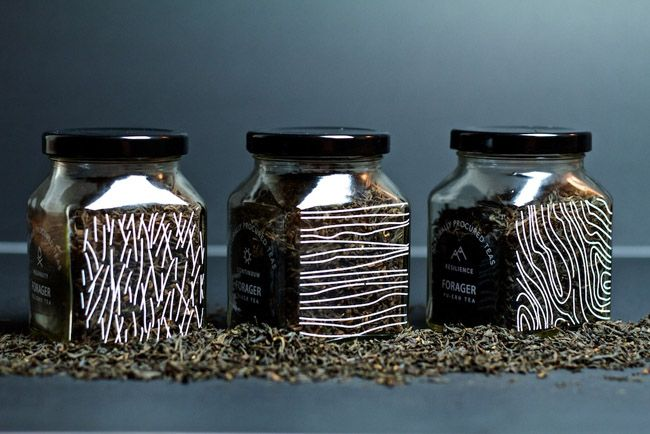 Forager Fine Tea (Student Work) on Packaging of the World - Creative Package Design Gallery