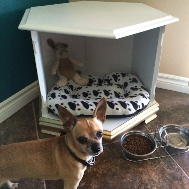 15 Stylish Pet Beds That Also Serve As Great Looking Tables Pet Beds Stylish Pet Beds Diy Dog Bed
