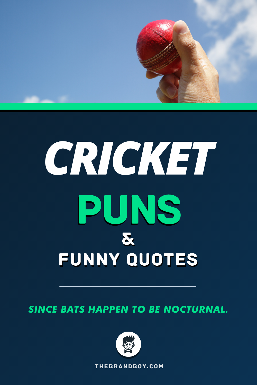 59 Best Cricket Puns And Funny Quotes Thebrandboy Com Cricket Quotes Funny Quotes Funny Puns