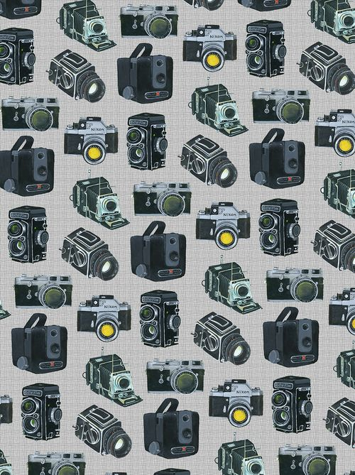Camera Repeat Pattern Via Bird In The Hand From