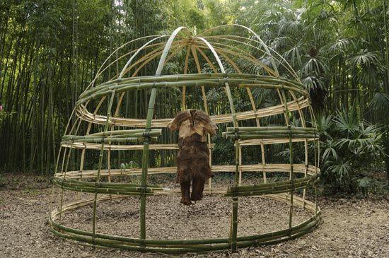 r sultat de recherche d 39 images pour fabriquer treillage bambou id e jardin pinterest. Black Bedroom Furniture Sets. Home Design Ideas