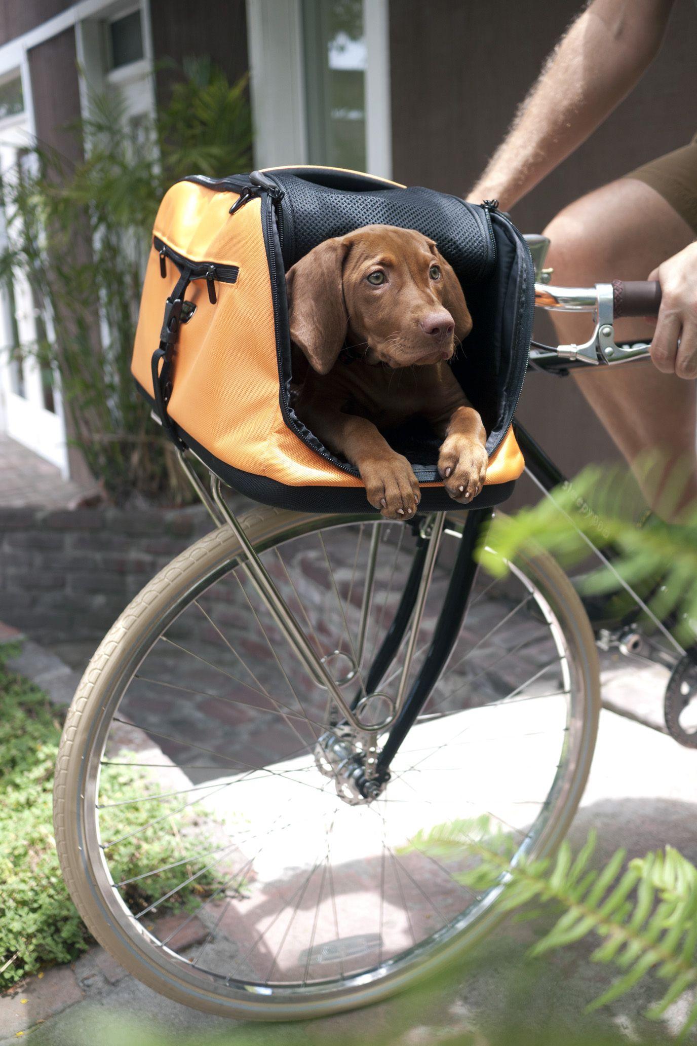 5bd45cf97b048da9c7d411e859ba3cc0 sleepypod sleepypod® orange dream pinterest bike, pet