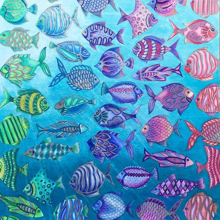 Image Result For Grey Pictures Of Fish With A Pop Colour Coloured Pencils