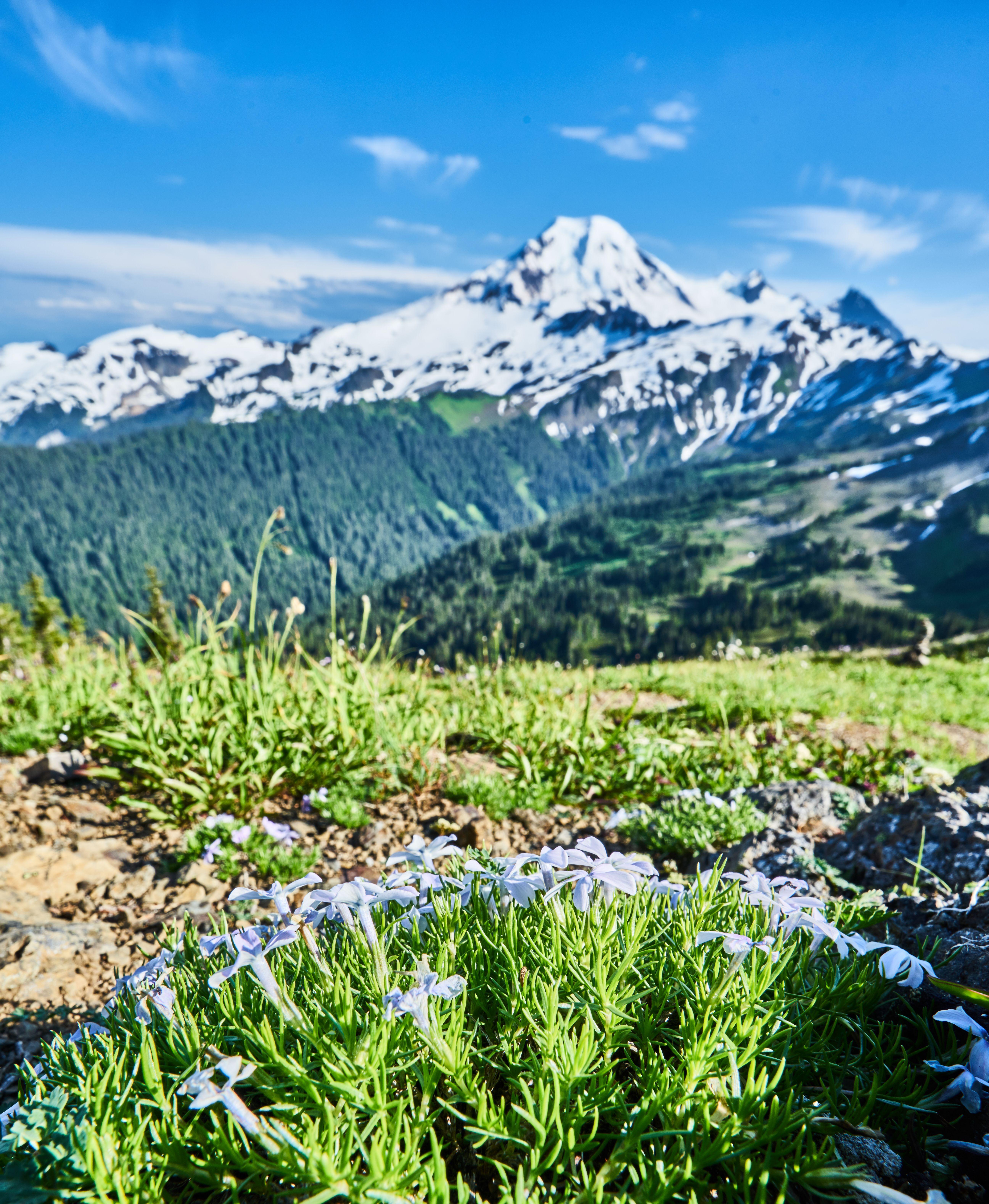 Great Hikes Near Bellingham (With images) Washington