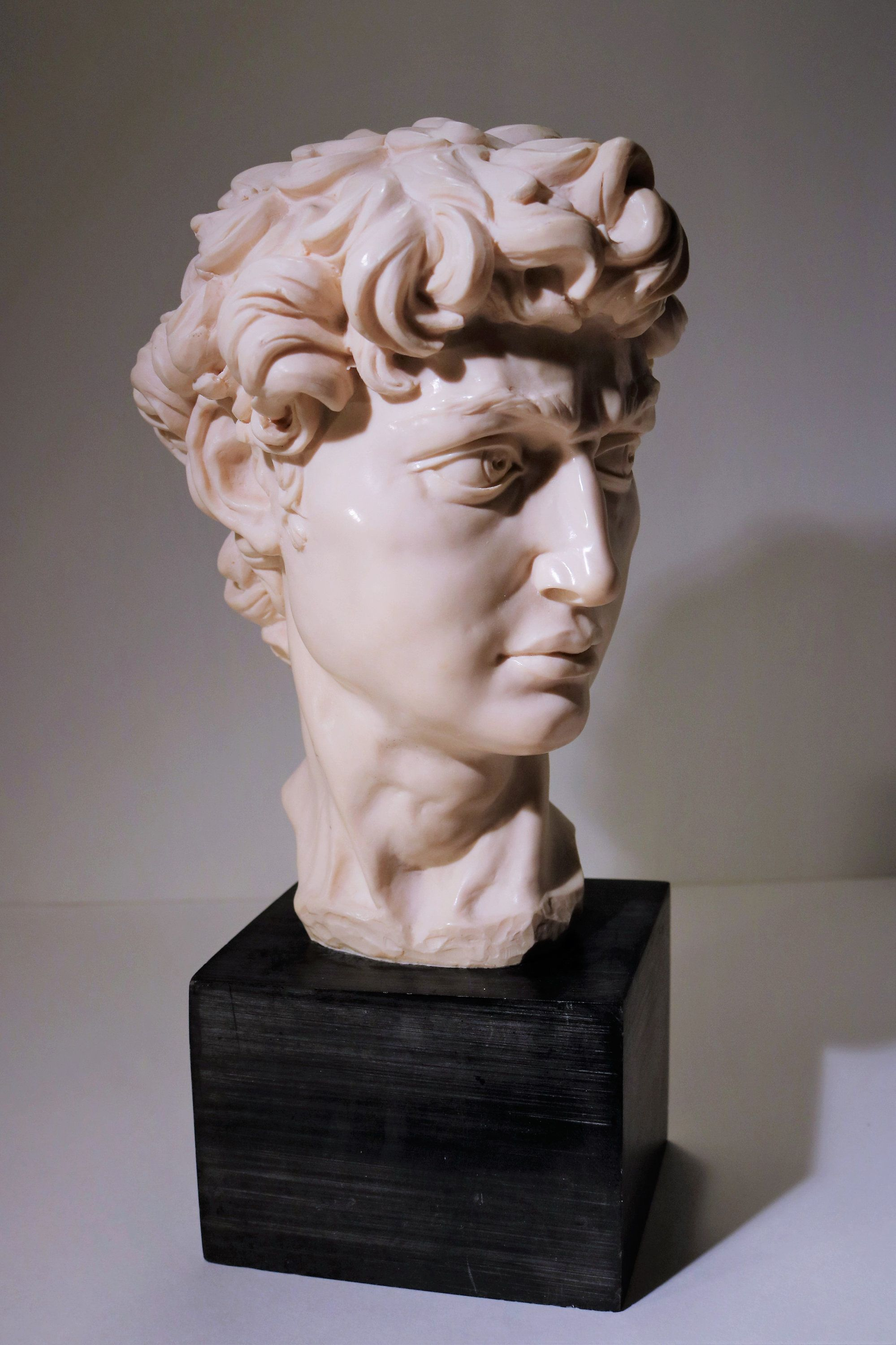 Museum Quality Large Michaelangelo S David Bust By A Santini