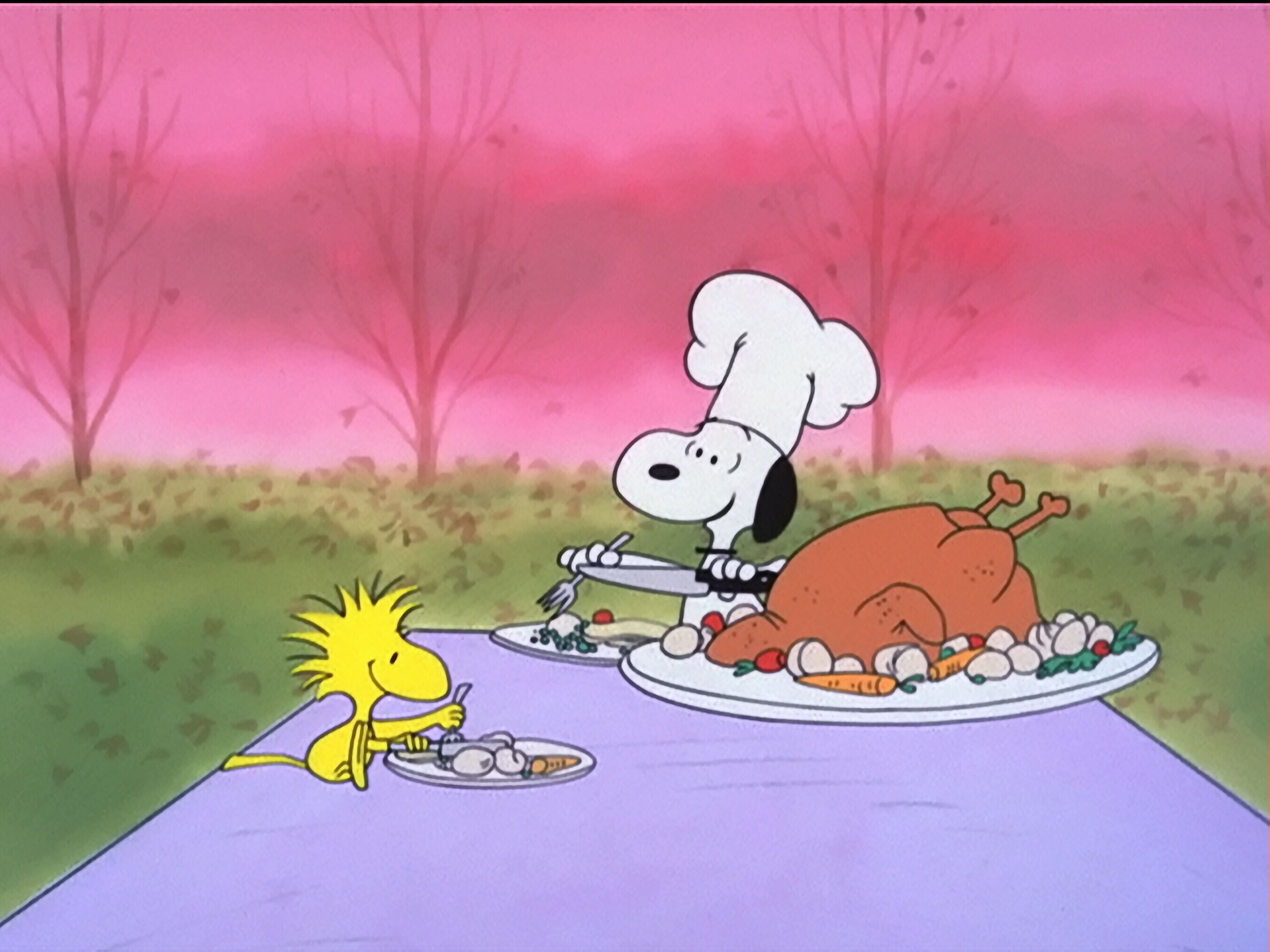 Snoopy And Woodstock Set The Table