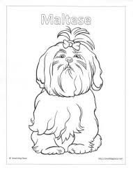 image result for shih tzu coloring pages paper piecing pinterest