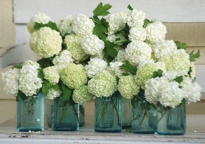 Hydrangea in mason jars as center pieces - I have a ton of mason jars already and twine.