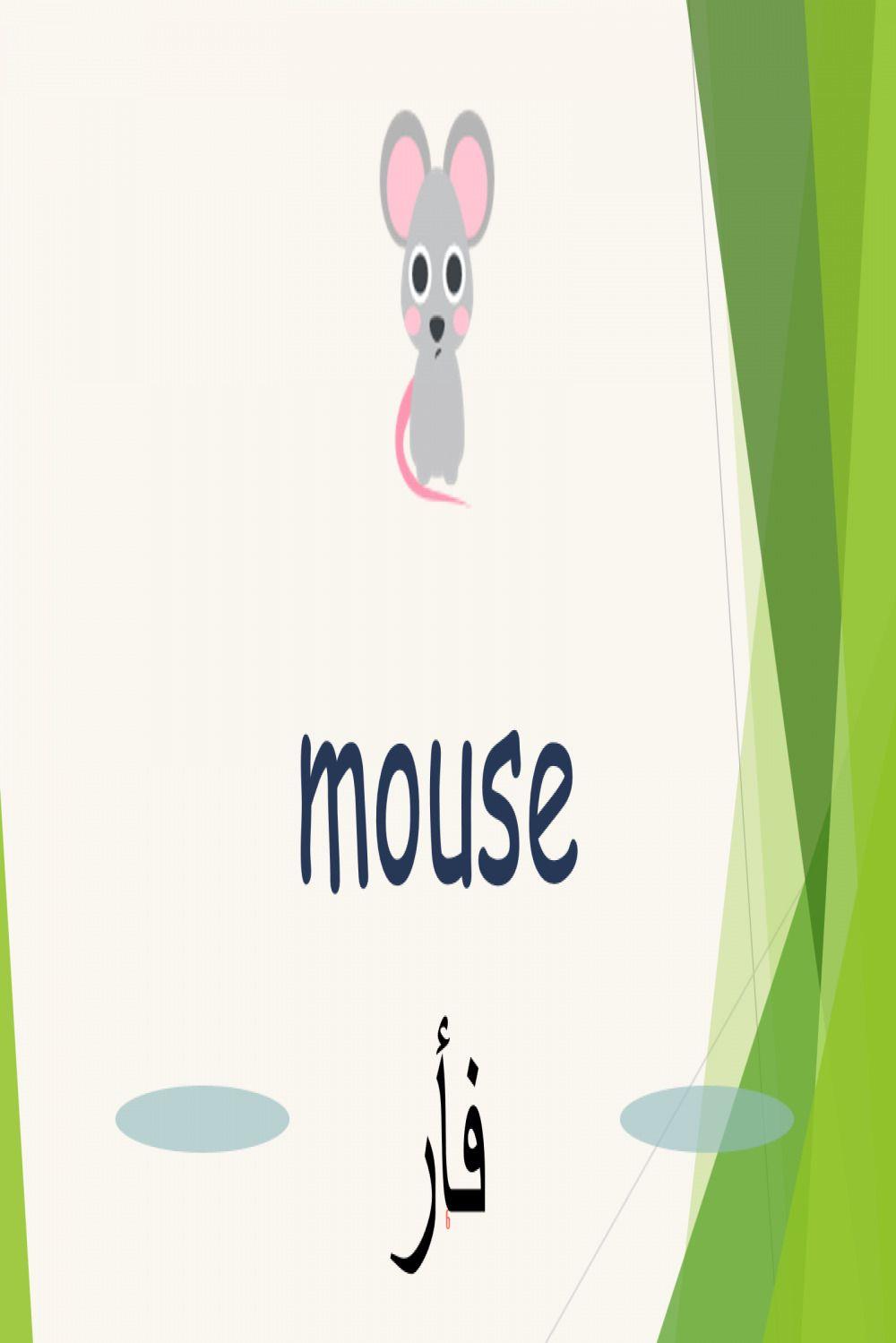 الحيوانات في اللغة الانجليزية الجزء الاول الحيوانات الاليفة Home Decor Decals Home Decor Blog Posts