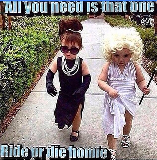 Omg that would be cute costumes for us! A blonde and brunette!  sc 1 st  Pinterest & Pin by mrs_rmb on Funnies | Pinterest | Bff