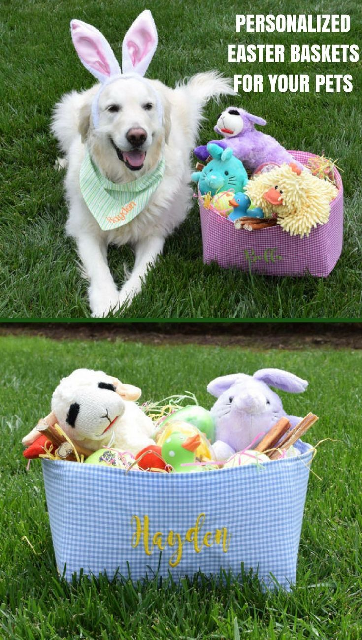 Personalized easter baskets gingham pet toy basket for your dog personalized easter baskets gingham pet toy basket for your dog or cat negle Image collections