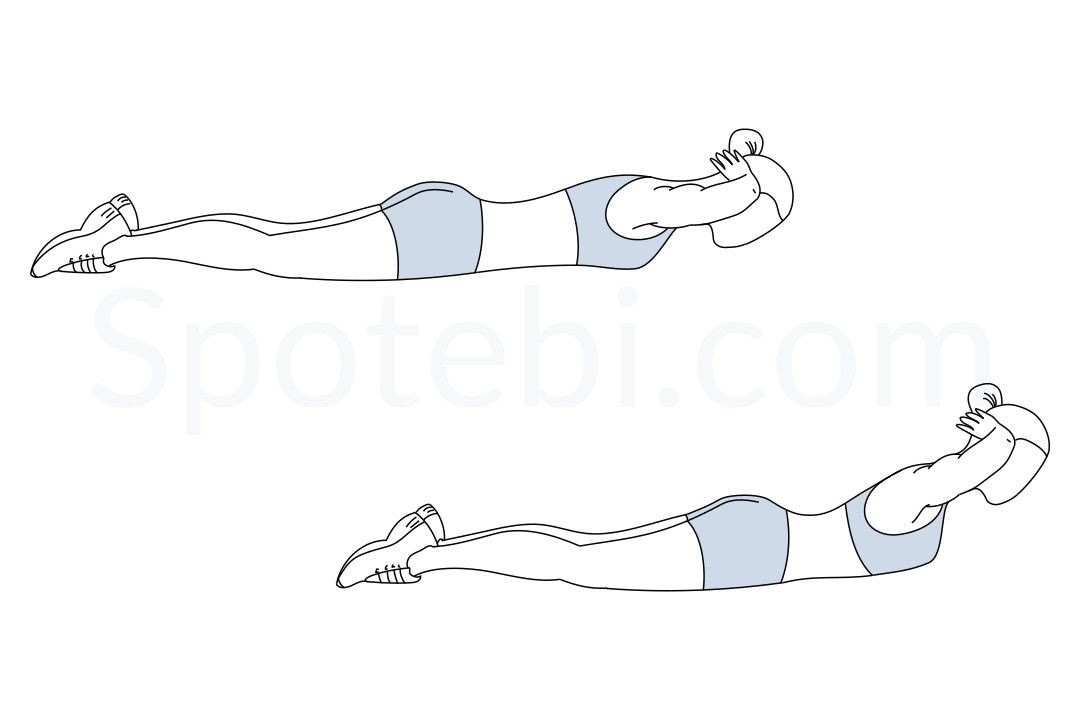 Back extensions exercise guide pinterest improve for Plank muscles worked diagram