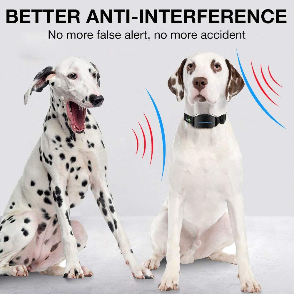 Dog Bark Collar Effective Bark Collar For Dogs Sound Vibration