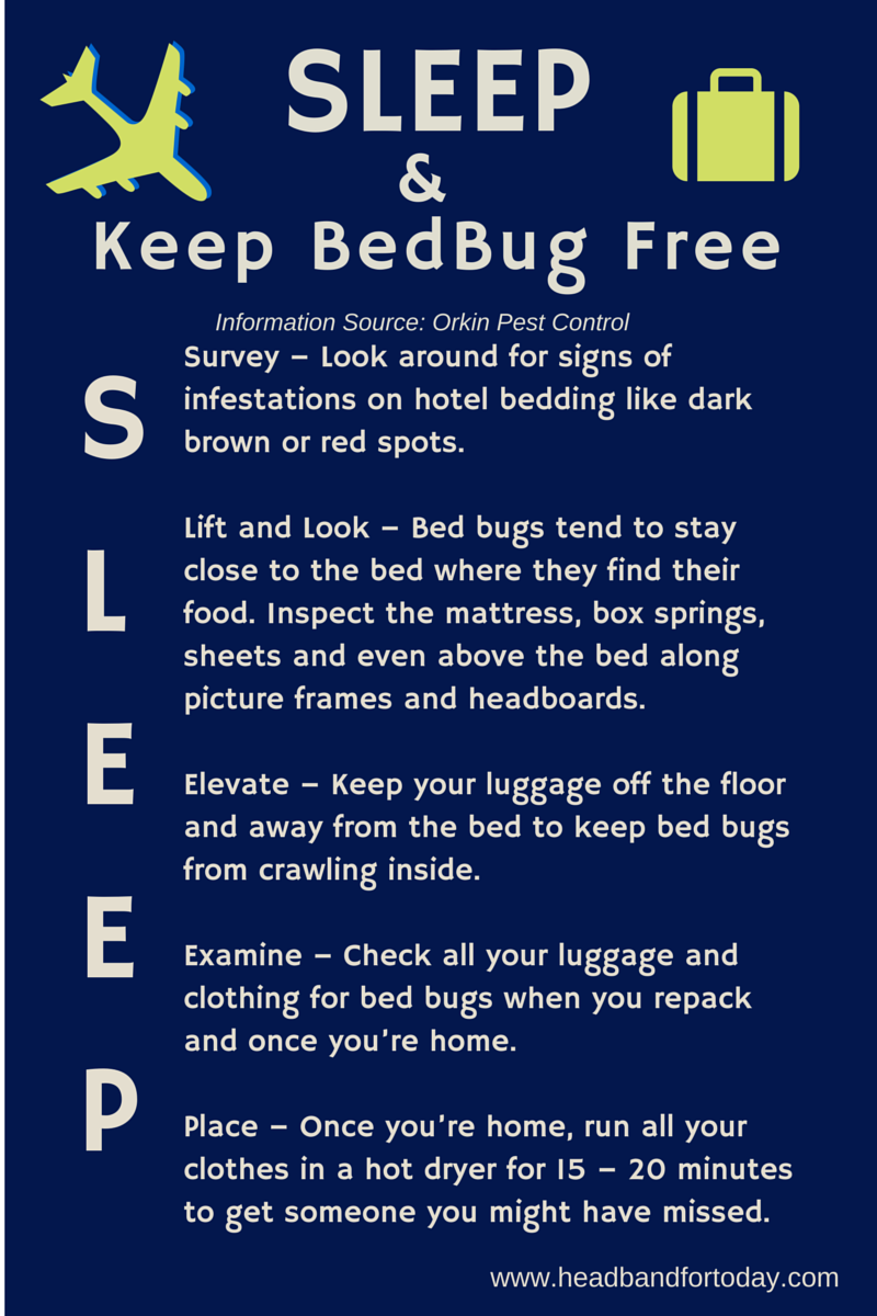 Dont Let The Bed Bug Bite SLEEP Well With Tips On How To