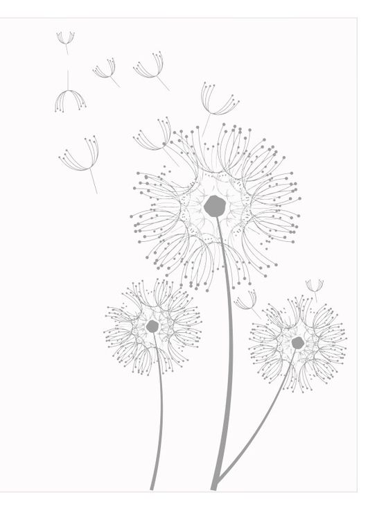 Coloring page dandelions coloring pinterest for Dandelion coloring page