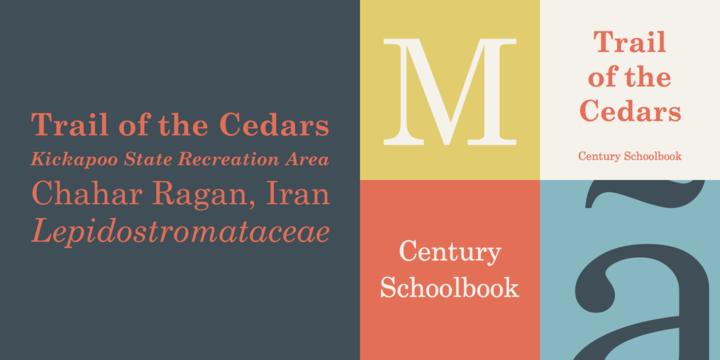 Century® Schoolbook - Webfont & Desktop font « MyFonts