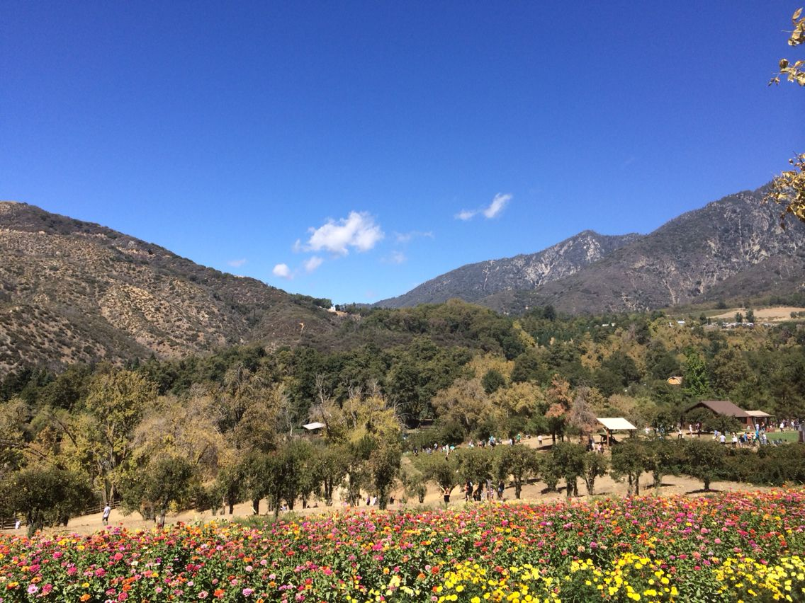 Yucaipa Ca California Yucaipa California Yucaipa Places To Visit