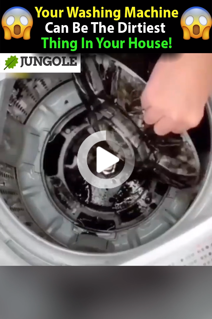 Your Washing Machine Can Be The Dirtiest Place At