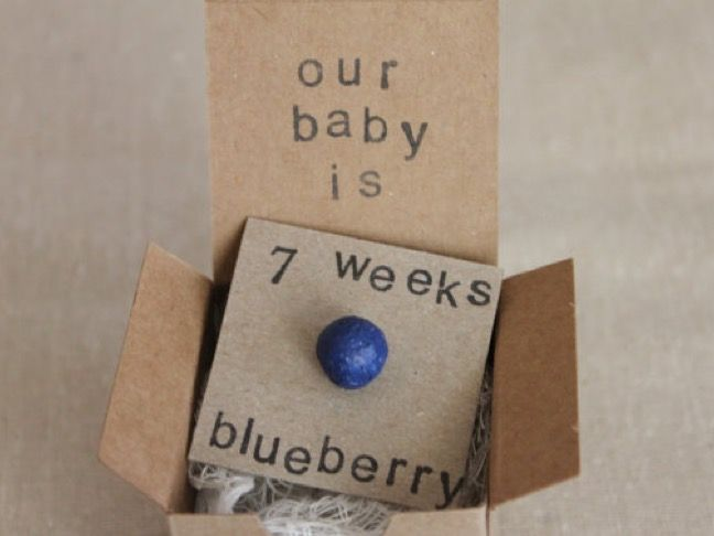 set of 7 week pregnancy announcements how big is my baby gender reveals baby size